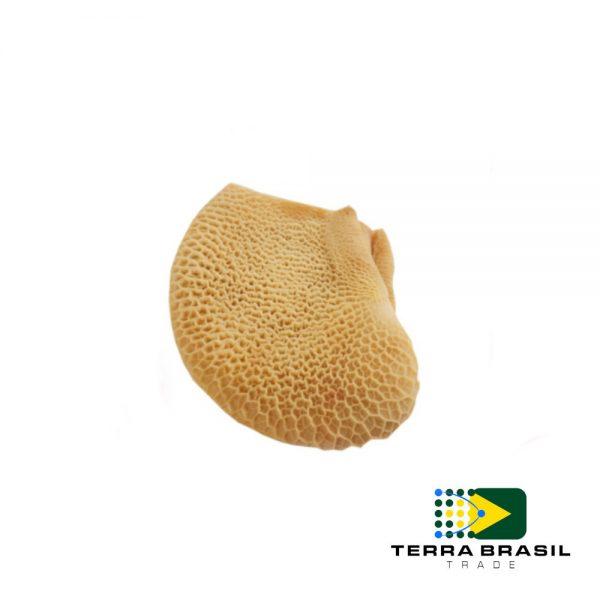 beef-honeycomb-export-terra-brasil-trade