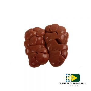 beef-kidneys-export-terra-brasil-trade