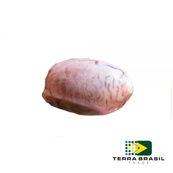 beef-testicle-export-terra-brasil-trade