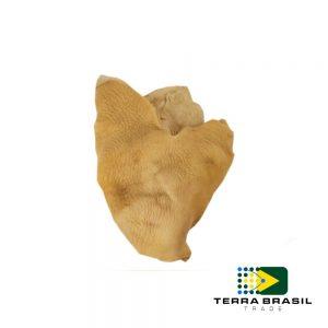 beef-tripe-export-terra-brasil-trade