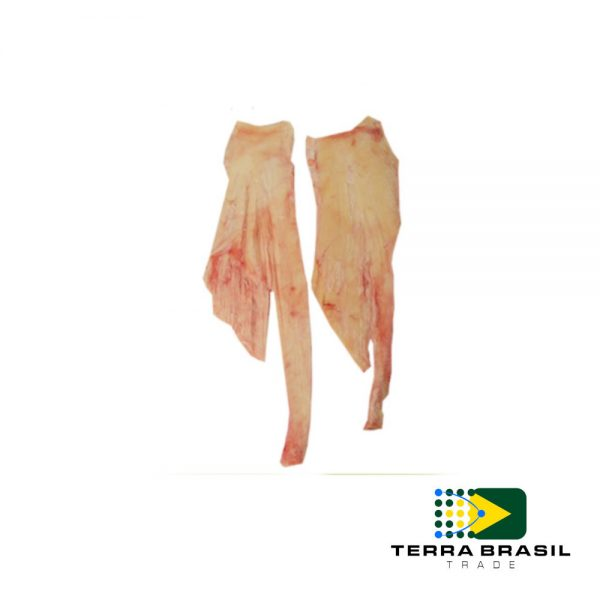 bonivo-nervo-cervical-exportacao-terra-brasil-trade